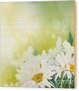 Spring Background Wood Print