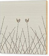 Spring Willow Twig And Birds Wood Print