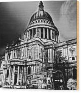 St Pauls Cathedral London Art Wood Print by David Pyatt
