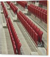Stadium Seats Wood Print by Frank Gaertner