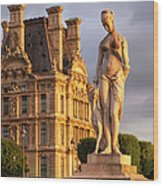Statue Below Musee Du Louvre Wood Print