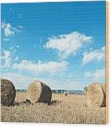 Straw Bales At A Stubbel Field Wood Print by Svetoslav Radkov