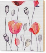 Stylized Poppy Flowers Illustration  Wood Print
