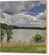 3-summer Time At Moraine View State Park Wood Print