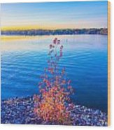 Sunset At Lake Wylie Wood Print