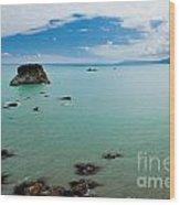 Tasman Sea At West Coast Of South Island Of Nz Wood Print
