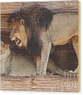 The Feline Honeymooners Wood Print