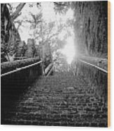 The Queen's Staircase Wood Print