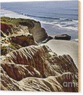 Torrey Pines State Park - California Wood Print