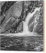 True's Brook Gorge Water Fall Wood Print