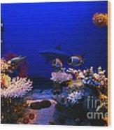 Underwater Scene Wood Print