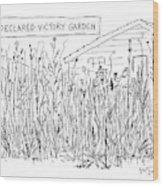 Declared Victory Garden Wood Print