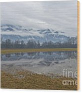 Water Puddle Wood Print