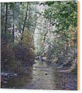 West Fork Oak Creek Wood Print