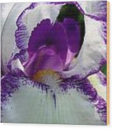 White And Purple Iris 2 Wood Print