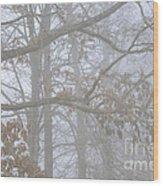 White Oak Tree In Fog Wood Print