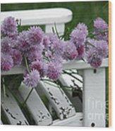 Wild Onion Flowers Wood Print