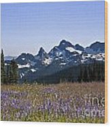 Wildflowers In The Cascades Wood Print