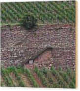 Wine Of Rhine Wood Print