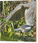 Yellow Crowned Night Heron Wood Print