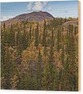 Yukon Gold - Fall In Yukon Territory Canada Wood Print