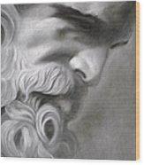 Zeus Wood Print