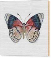 30 Perisama Vaninka Butterfly Wood Print
