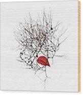 3041 Wood Print