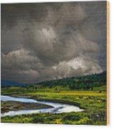 3089 Wood Print