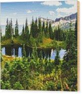 30920-55 Trailside Lake Wood Print