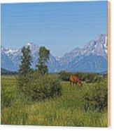 3244 Wood Print