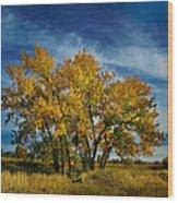 3266 Wood Print