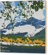 Norway  Landscape Wood Print