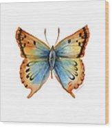 33 Opal Copper Butterfly Wood Print