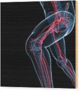Sprinter Wood Print