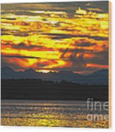 333 Marine Sunrise Wood Print