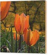 3382 Wood Print