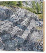 Usa, Alaska, Glacier Bay National Park Wood Print