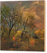 3415 Wood Print