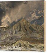 3568 Wood Print