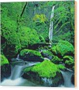 Usa, Oregon, Columbia River Gorge Wood Print
