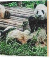 3722-panda -  Embossed Sl Wood Print