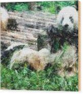 3722-panda -  Light Colored Pencils Wood Print
