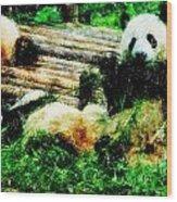3722-panda -  Pastel Pencils Wood Print