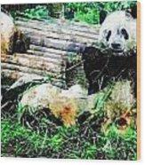 3722-panda -  Plein Air 1 Sl Wood Print