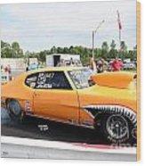 3729 07-26-14 Esta Safety Park Wood Print