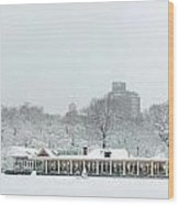Central Park Winter Wood Print