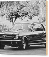 1965 Shelby Prototype Ford Mustang  Wood Print