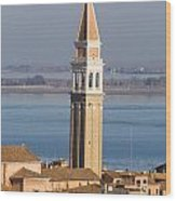 Aerial View Of Venice Wood Print