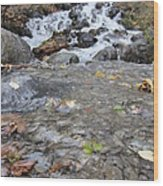 Alaskan Waterfall Wood Print